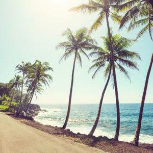 Find a Dentist in Honolulu, Hawaii